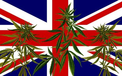 The Church Of Englands Fund Will Now Invest In Cannabis