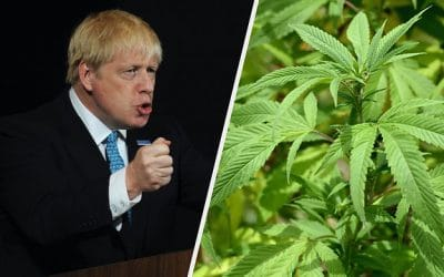 Boris Johnson Hires Legal-Pot Advocate as Justice Adviser