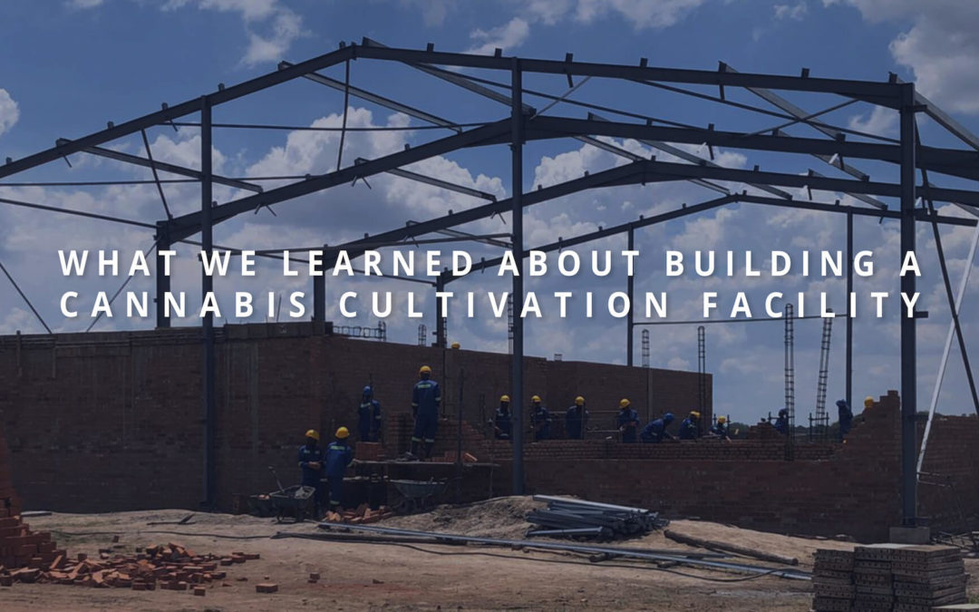 What We Learned About Building A Cannabis Cultivation Facility