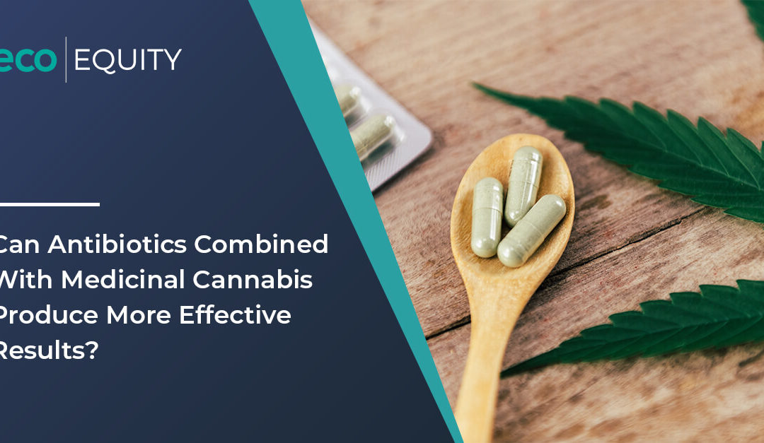 Can Antibiotics Combined With Medicinal Cannabis Produce More Effective Results?