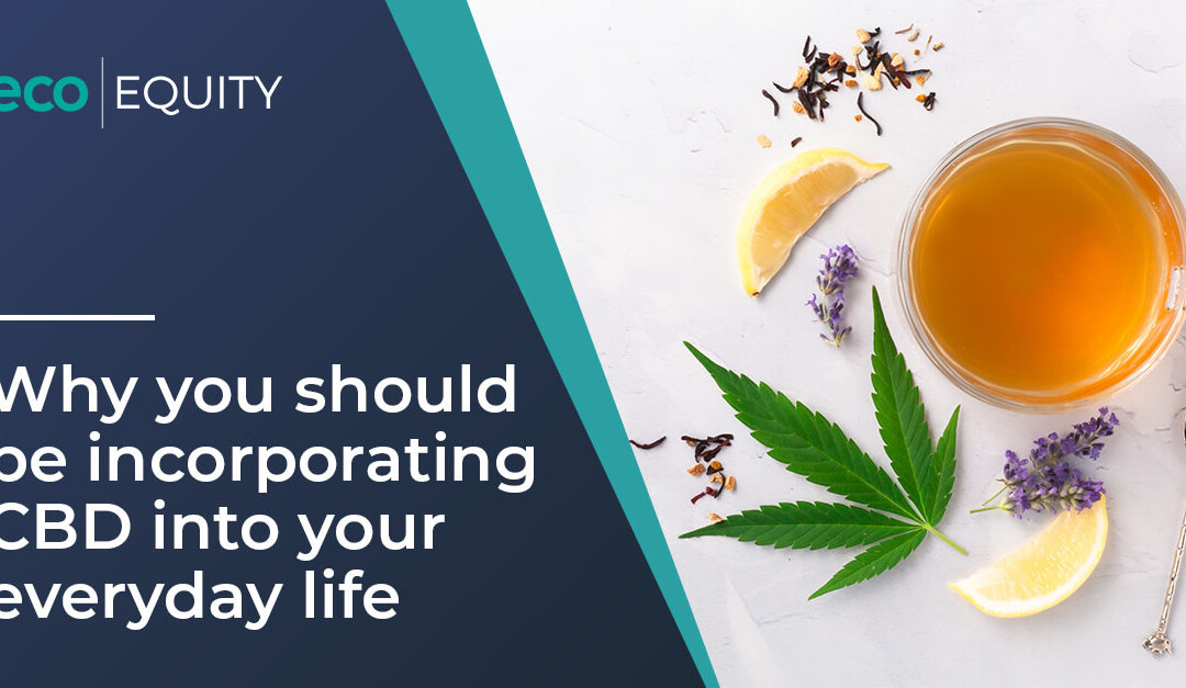 Why You Should Be Incorporating CBD Into Your Everyday Life